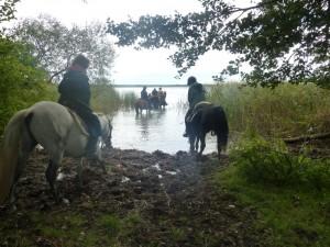 Reiterfest Ritt zur Pferdeschwemme